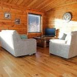 Log cabins & chalets