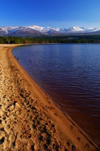 on the shores of Loch Morlich near Aviemore