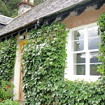 tomich holiday cottage